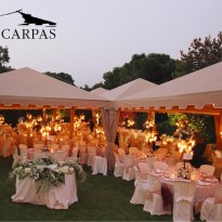 carpa color  Beige