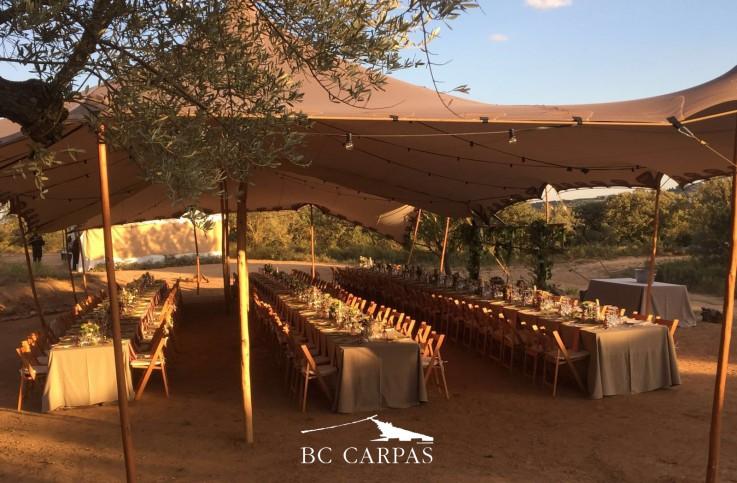 Una boda entre olivos con carpa tensada